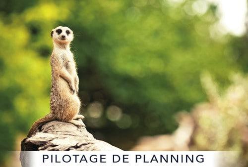 PILOTAGE DE PLANNING LeBureau.Pro